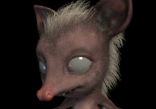 FeatOpossum